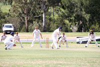 K1656 - Cricket - A Wy Yung v St Mary's, November 12, 2016