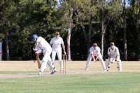 K246 - Cricket - St Mary's Nagle v Wy Yung A, February 27, 2016