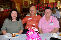 Snowy Flamingo Cancer Support Group (10)