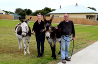 S175 - Donkey Walkers, May 14, 2017