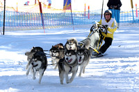 K1148 - Dinner Plain Sled Dog Challenge, August 13, 2016