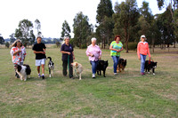 K475 - Heart Foundation Walking the Dog, April 14, 2016