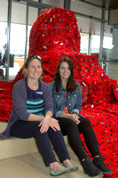 K1618 - 5000 Poppies project, Paynesville Service Centre, November 10